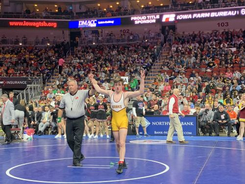 Champs! See who won titles at high school state wrestling