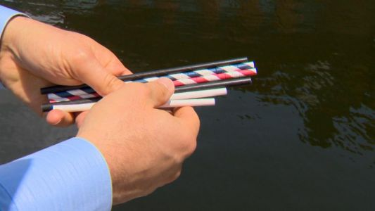 Maryland company seeing paper straw trend unfold firsthand