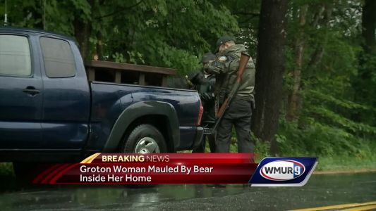 New Hampshire woman seriously hurt during encounter with bear in her kitchen