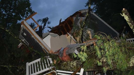 NH woman, 60, dies after large tree falls on apartment during Isaias
