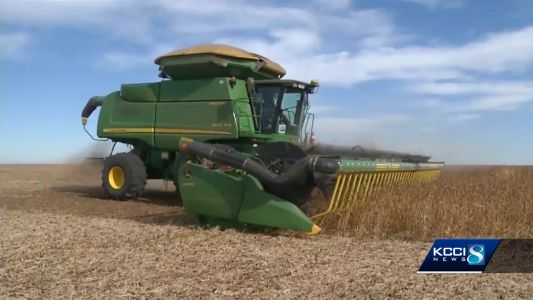 US trade, immigration and biofuel policies hit farmers hard