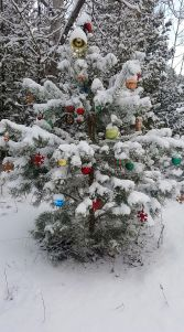 Conservation authority strips ornaments from trees, but Christmas spirit harder to take down