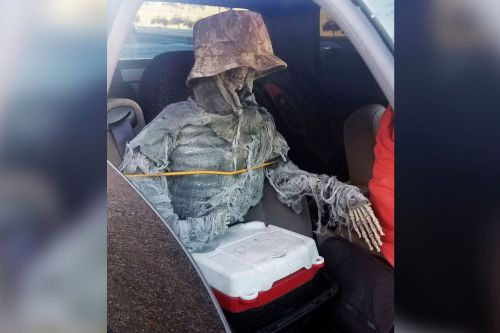 Arizona driver busted for riding with skeleton in HOV lane