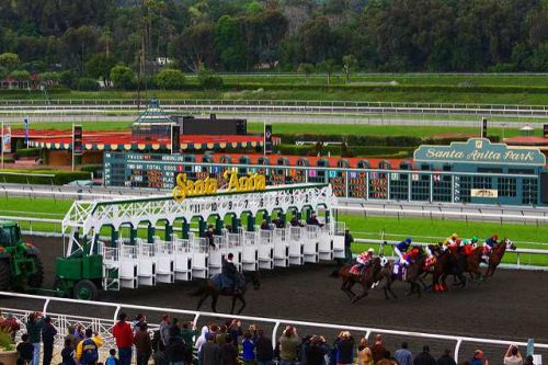 A 26th racehorse dies at Santa Anita Park