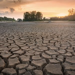 2012: National drought
