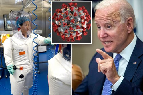 Here's all the proof Biden needs to conclude COVID-19 was leaked from a lab