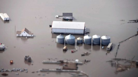 Midwest flooding has killed livestock, ruined harvests and has farmers worried for their future