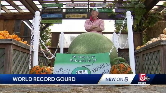Local grower gets giant gourd in record books