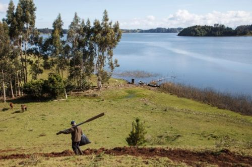 An Indigenous Rights Leader Is Trying to Rewrite Chile's Constitution to Put its Ecosystems First