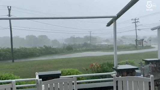 Video captures ferocious winds pounding Barnstable