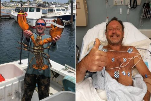 Lobster diver says he was swallowed by humpback whale near Cape Cod