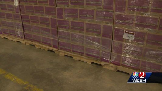 Central Florida Girl Scout Council has difficulty selling cookies during pandemic; 214,000 boxes sit in warehouse