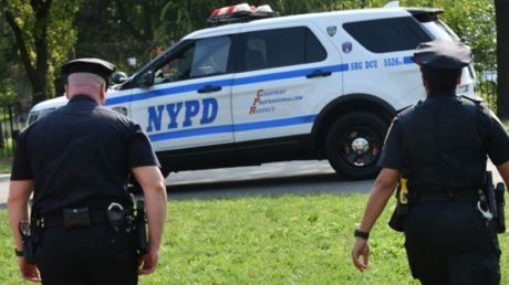 New York City man finds novel way to evade arrest, jumping into tree and refusing to come down for days