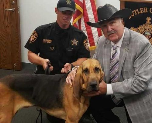 K-9 assists Sheriff's office in locating juvenile suspect