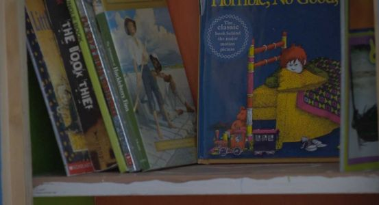 New 'little libraries' bring books to underserved kids