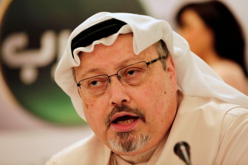 Turkish policing search forest for remains of Jamal Khashoggi