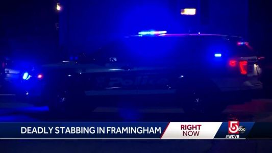 Woman found stabbed to death in Framingham