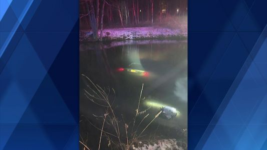 Witness to crash jumps into water, rescues woman from sinking vehicle