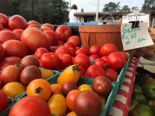 State officials celebrate NH farmers markets