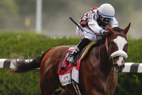 Belmont winner Tiz the Law won't run in Preakness