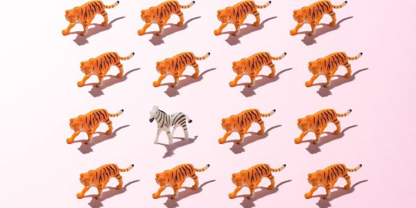 Hedge fund Tiger Global is beating out Silicon Valley VCs and averaging more than 1 startup investment per business day so far this year. Here's 110 of them