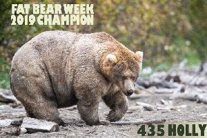 Your daily 6: Massive airline furloughs, race troubles for Trump and have fun: Fat Bear Week begins
