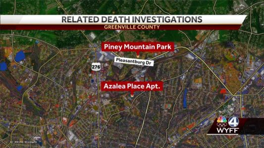 Teen arrested in fatal double shooting at Greenville County park, deputy says