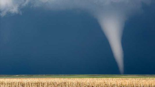 Survive a tornado: 5 things you need to do now