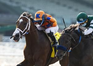 House approves bill to combat doping in horse racing