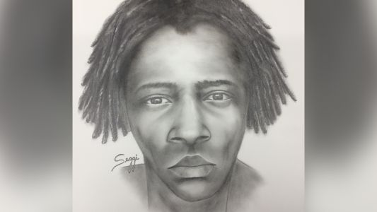 Suspect sketch released after minor raped at Orlando park