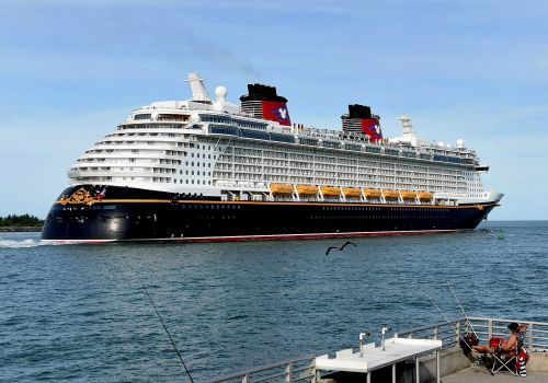 Federal court blocks order lifting CDC restrictions on cruise ships