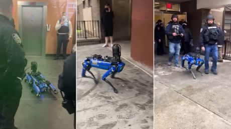 New Yorkers freak out as NYPD deploys Digidog, despite city's project to ban 'weaponized robots'