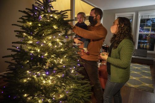 Many turn to real Christmas trees as bright spot amid pandemic
