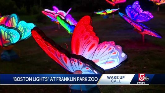 Wake Up Call from Boston Lights at Franklin Park Zoo