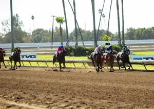 2 horses die after suffering racing injuries at Los Alamitos