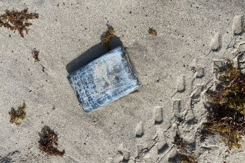 Wildlife manager finds $1.2 million in cocaine at Cape Canaveral beach