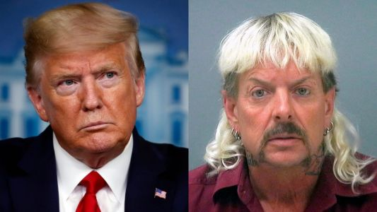 A reporter asked Trump if he'd pardon Joe Exotic from 'Tiger King' and Trump said he'd look into it
