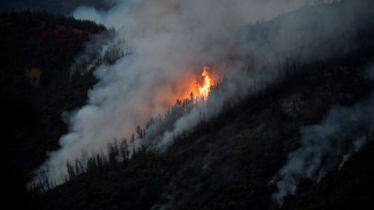 Judge: California fund can offer only wildfire insurance