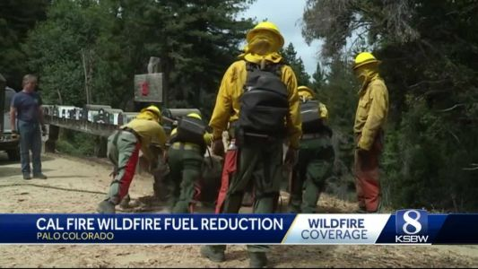Fuel reduction projects continue in Monterey County