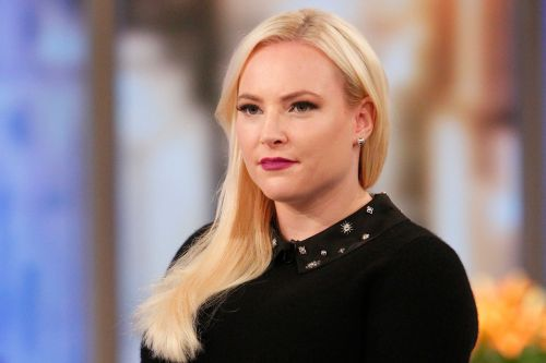 Meghan McCain on keeping guns while in Virginia: 'It's not a foreign concept'