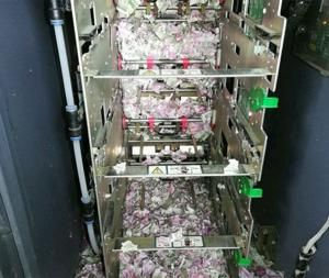 Rat chews up nearly $18,000 cash in ATM