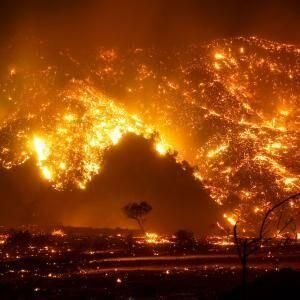 2020: California wildfires linked to drought-and climate change