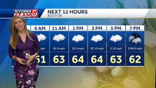 Video- A Few Showers Today, Afternoon Improvements