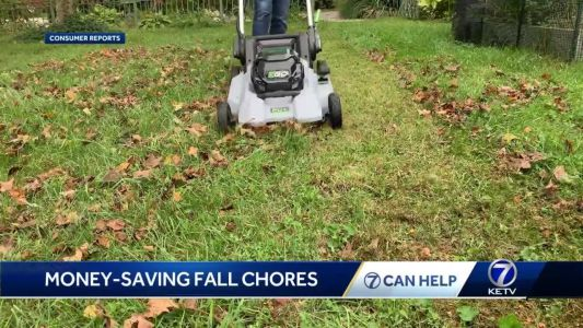 Money saving tips: The fall chores you can't afford to ignore