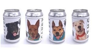 Florida brewery features shelter dogs on beer cans to find them homes