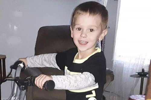 Missing 3-year-old boy disappeared from grandma's backyard: cops