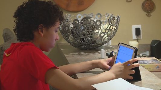 Private tutoring on the rise as more schools choose remote learning this fall