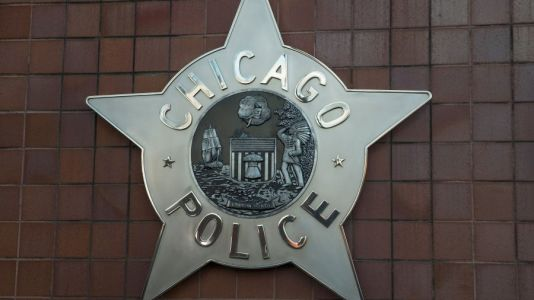 Chicago police hire first official focused on disability law