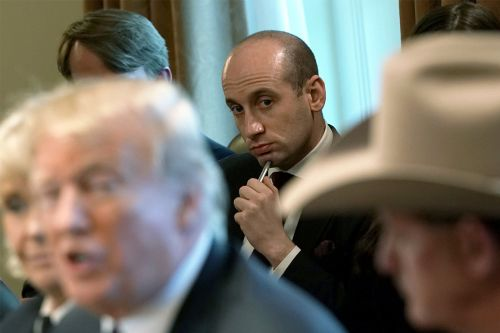 Miller goes to bat for Trump over emergency declaration