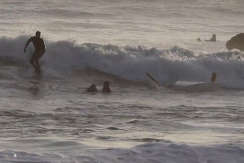 'Students overboard!': Surfers save the day after sailboats capsize